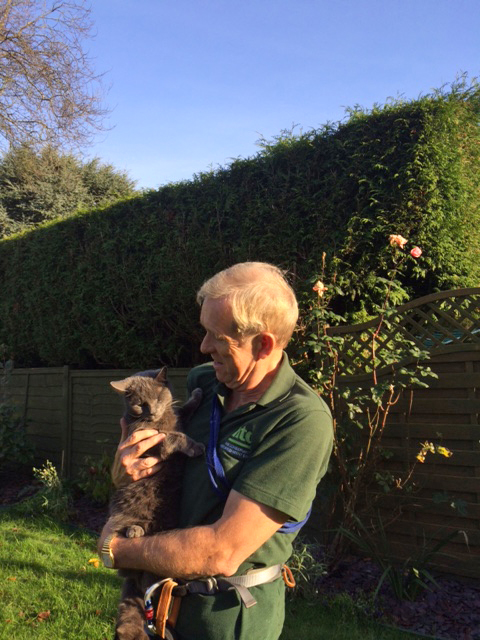 Cat stuck on conservatory roof - rescued by David Anderson, HTG